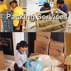 Packingserv