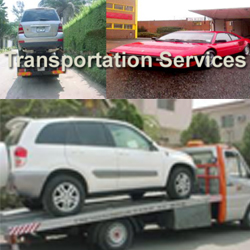 Transpotation
